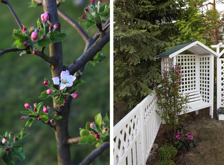 ogrod-na-wiosne