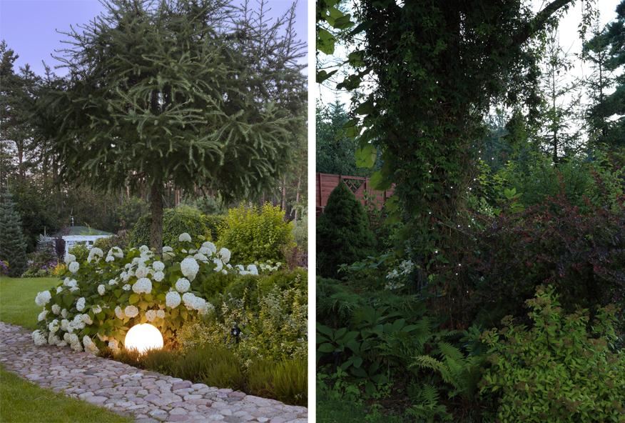 jak oświetlić ogród