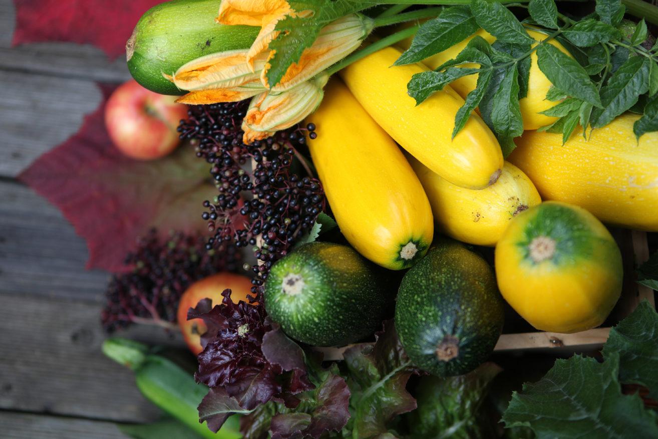 Cukinia to idealne warzywo, z którego zrobimy zapiekanki, placuszki a nawet ciasto.