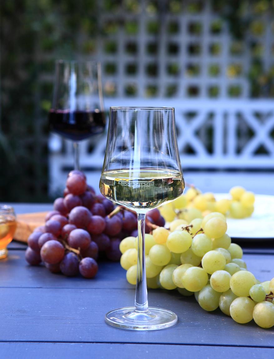 greencanoe-biale-wino