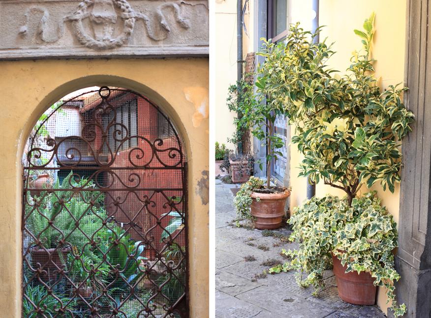 Włoskie ogrodu i ogródeczki wprawiają w zachwyt.