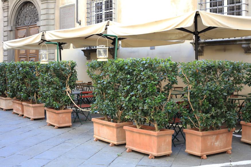 gdzie-dobrzezjesc-w-toskanii-lukka-ogrodek-restauracja