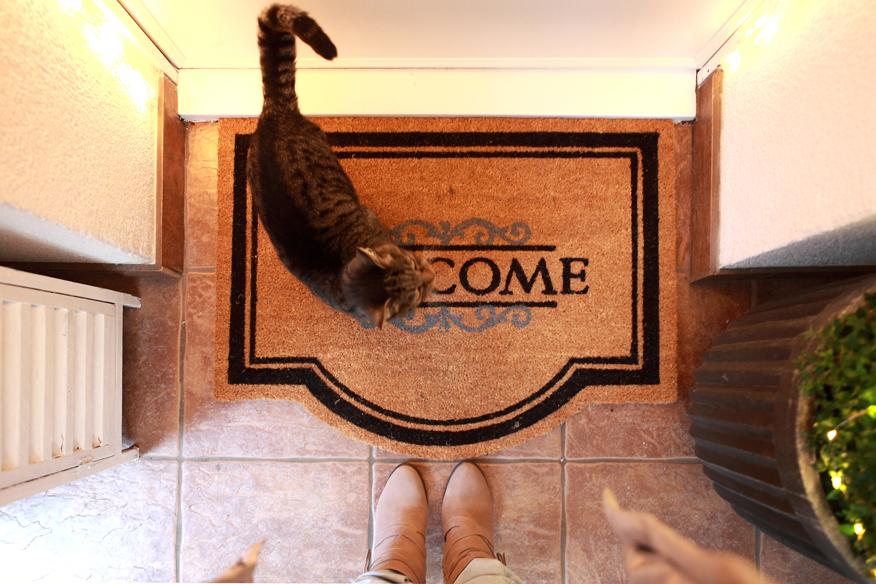 wejscie-do-domu-jak-wyremontowac-drzwi
