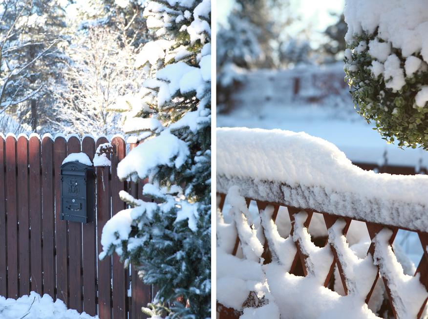 zimowy-krajobraz-ogrodowy