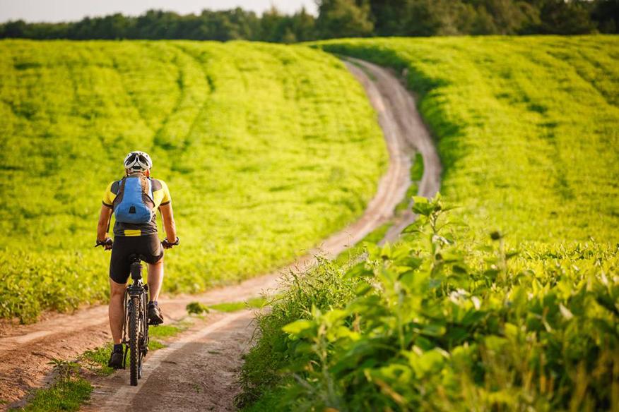 Najpiekniejsze trasy rowerowe w Polsce