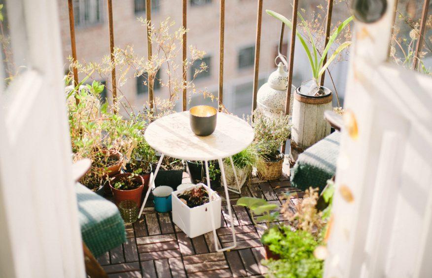 balkon rośliny lato GREEN CANOE