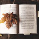 do kawy książka GREEN CANOE